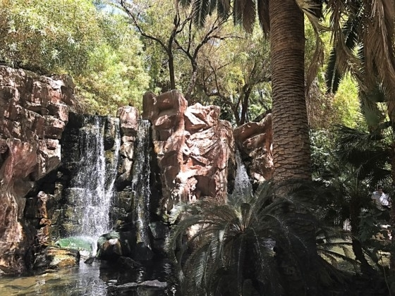 The Wildlife Habitat at The Flamingo Hotel & Casino Las Vegas