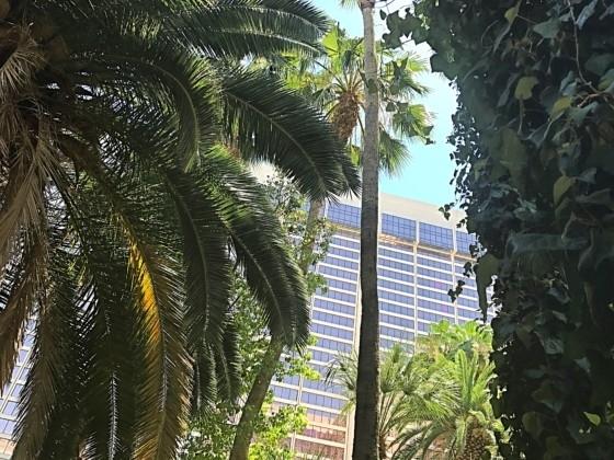 The Wildlife Habitat at The Flamingo Hotel & Casino Las Vegas